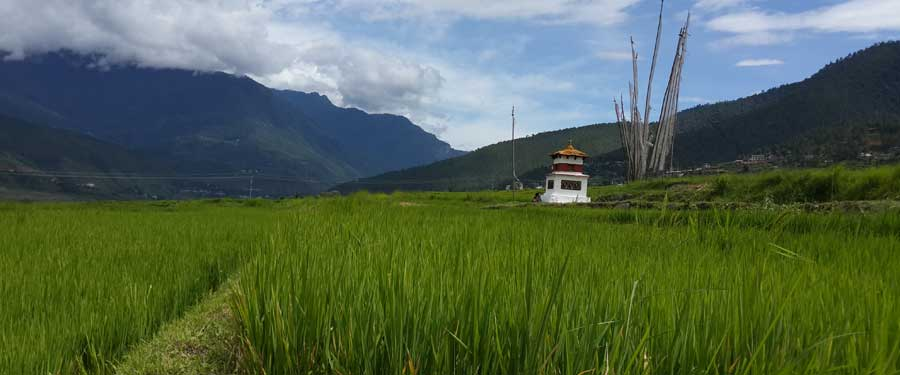 cost to travel to Bhutan